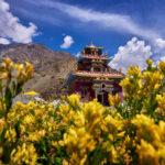 Gyu Monastery Pics