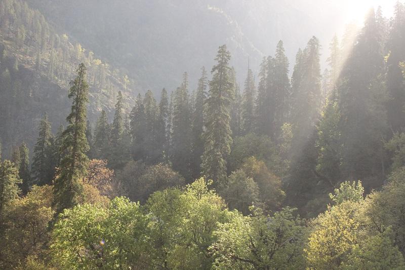 6 Must Visit Places in and around Manali | Himachal Pradesh