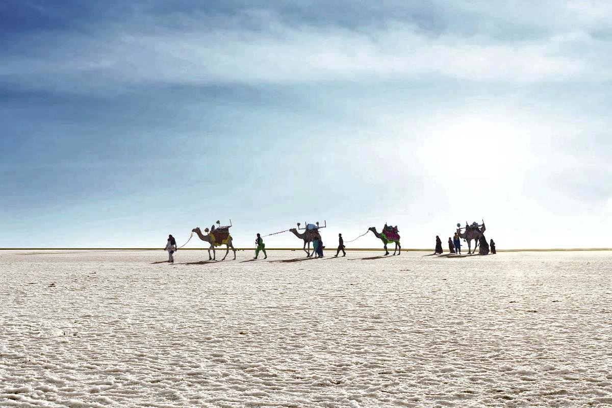 Great Rann of Kutch.jpg