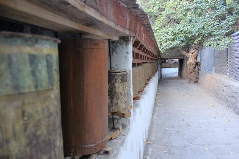 Alchi Monastery Leh (15)