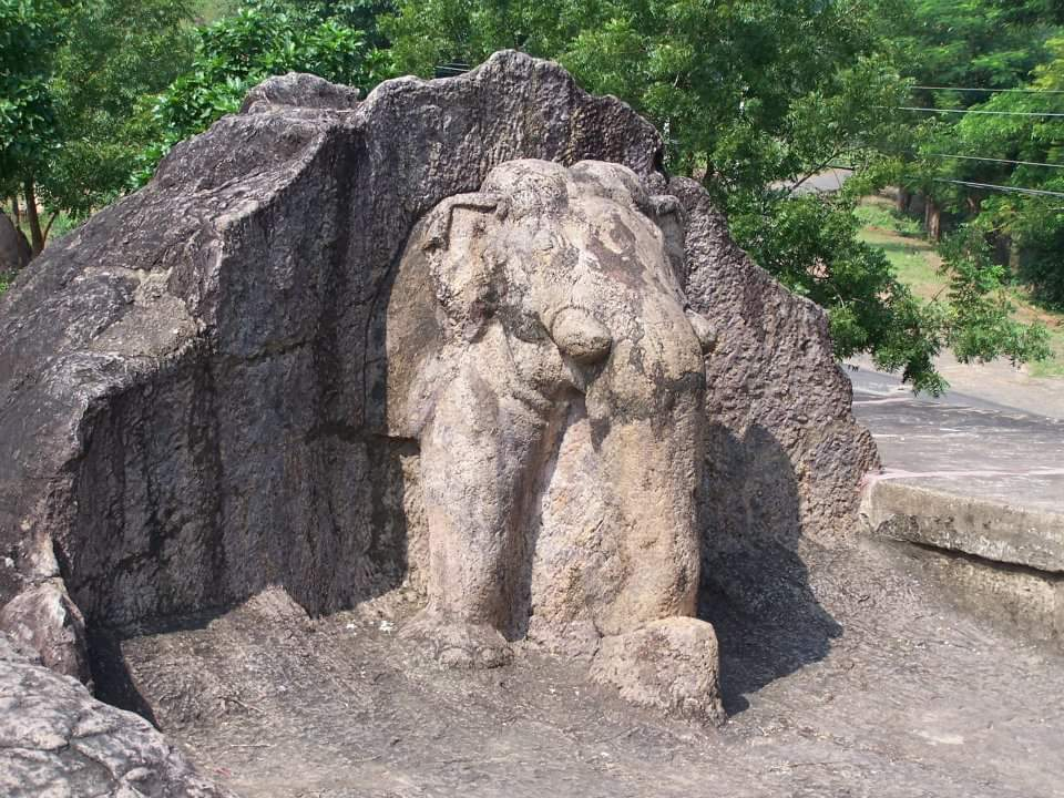 Dhauli Shanti Stupa10