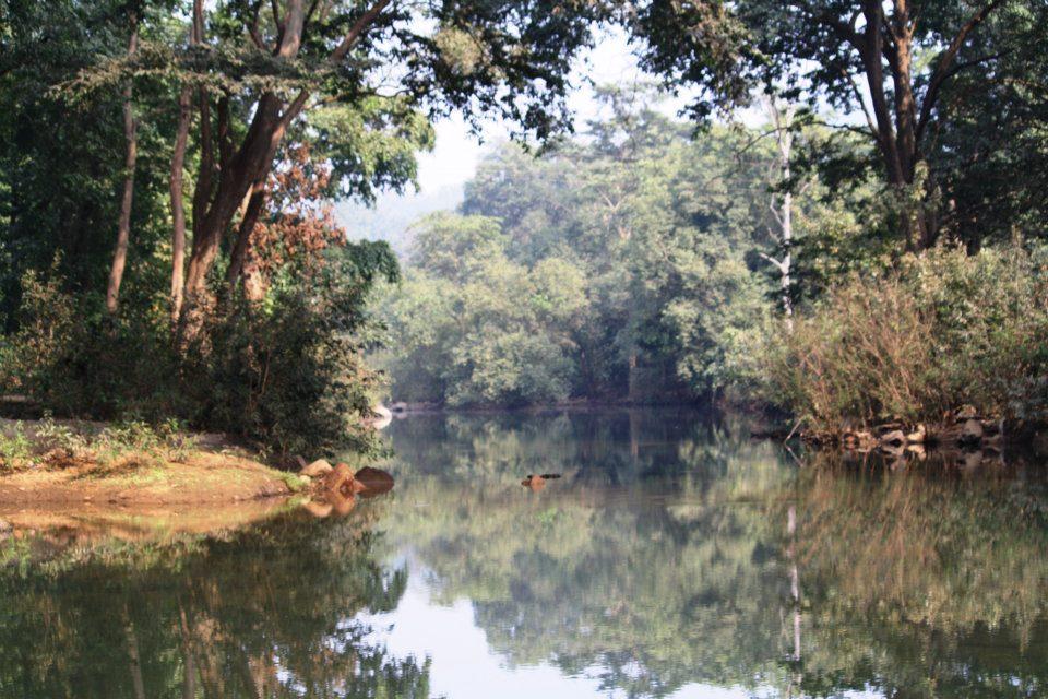 scenic odisha pics